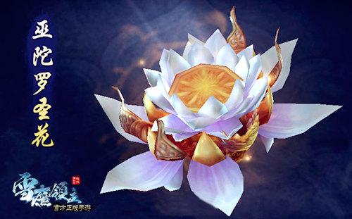 图2 巫陀罗圣花.jpg